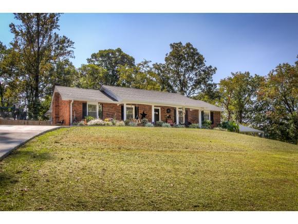 5133 Spring Hill Dr, Kingsport, TN 37664 (MLS #397401) :: Conservus Real Estate Group