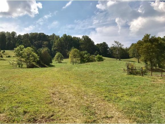 TBD Pairgin Road, Bristol, VA 24202 (MLS #397432) :: Conservus Real Estate Group