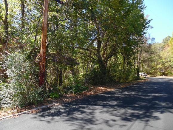 1406 Stoneybrook Drive, Johnson City, TN 37601 (MLS #397966) :: Conservus Real Estate Group