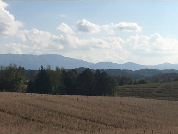 12-16 107 Cutoff, Greeneville, TN 37743 (MLS #398191) :: Highlands Realty, Inc.