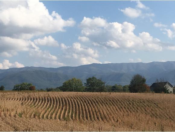 6,9-16 107 Cutoff, Greeneville, TN 37743 (MLS #398193) :: Highlands Realty, Inc.