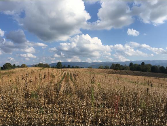 000 107 Cutoff, Greeneville, TN 37743 (MLS #398194) :: Highlands Realty, Inc.