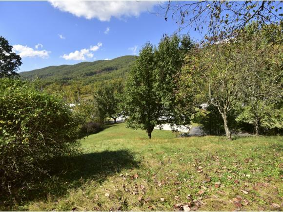 2700 Bristol Highway, Gate City, VA 24251 (MLS #398357) :: Highlands Realty, Inc.