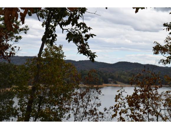 807 Wilderness Drive, Mooresburg, TN 37811 (MLS #398385) :: Highlands Realty, Inc.