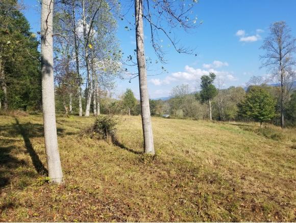 TBD Bullock Hollow Rd, Bristol, TN 37620 (MLS #398389) :: Highlands Realty, Inc.