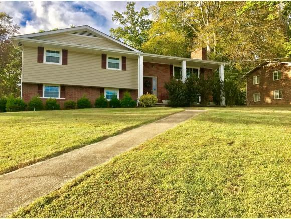 221 Kanan Drive, Kingsport, TN 37664 (MLS #398673) :: Highlands Realty, Inc.