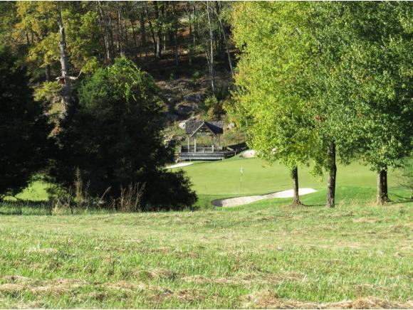 107 Springview Rigde, Bristol, VA 24202 (MLS #399157) :: Highlands Realty, Inc.