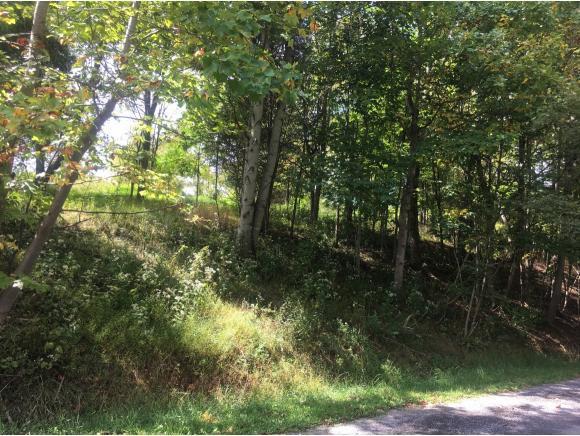 TBD Poplar Avenue, Lebanon, VA 24266 (MLS #399409) :: Highlands Realty, Inc.