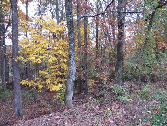 lot 46 Stonewall Ridge, Bristol, VA 24202 (MLS #399527) :: Highlands Realty, Inc.