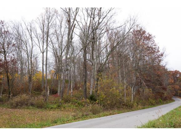 TBD Buffalo Pond Rd, Bristol, VA 24202 (MLS #399614) :: Conservus Real Estate Group