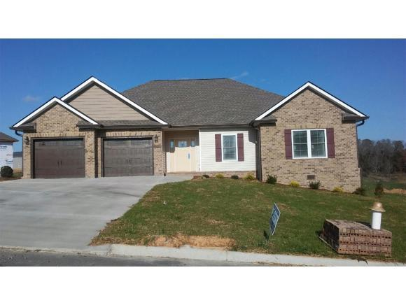 1359 Peaceful Drive, Jonesborough, TN 37659 (MLS #399650) :: Conservus Real Estate Group