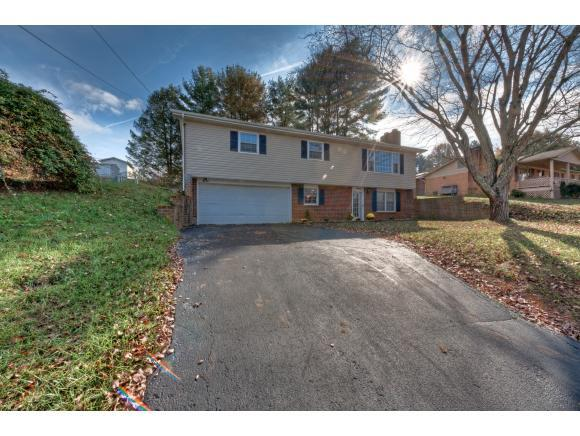 23375 Four Seasons Dr, Bristol, VA 24202 (MLS #399678) :: Conservus Real Estate Group