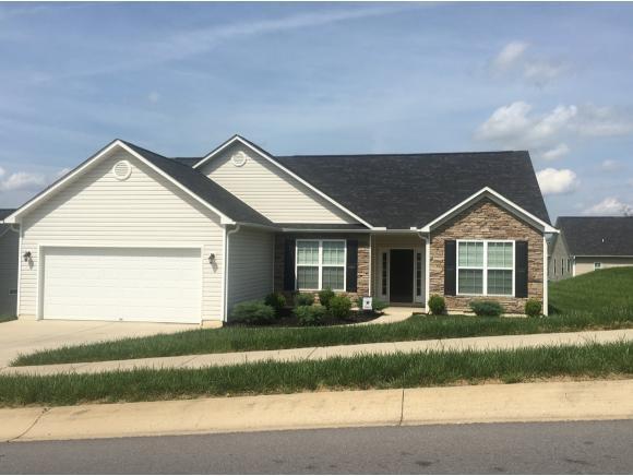1432 Hammett Rd, Johnson City, TN 37615 (MLS #399765) :: Conservus Real Estate Group