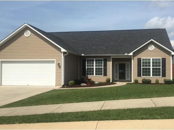 1465 Hammett Rd, Johnson City, TN 37615 (MLS #399767) :: Conservus Real Estate Group