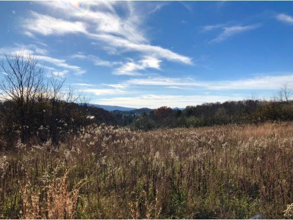 TBD Red Rock Road, Wise, VA 24293 (MLS #399839) :: Conservus Real Estate Group
