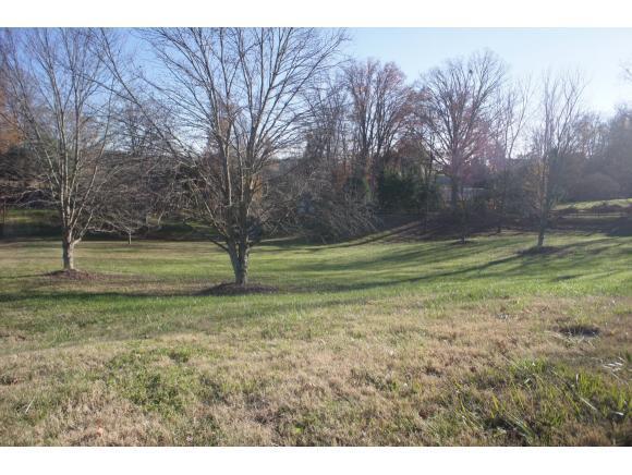109 Beechwood Court, Kingsport, TN 37663 (MLS #400025) :: Highlands Realty, Inc.