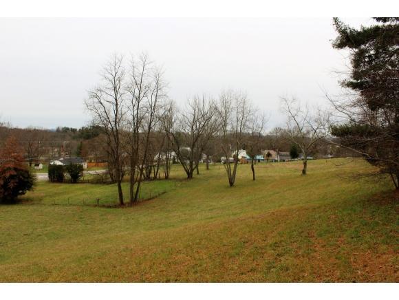 TBD White's Mill Road, Abingdon, VA 24210 (MLS #400353) :: Highlands Realty, Inc.