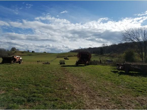 TBD Orleans Drive, Abingdon, VA 24210 (MLS #400362) :: Highlands Realty, Inc.