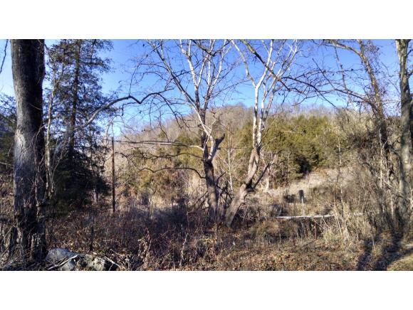 TBD Clinch Mountain Road, Eidson, TN 37731 (MLS #400421) :: Highlands Realty, Inc.