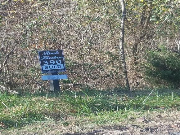 Lot 390 Graphite Ct, New Tazewell, TN 37825 (MLS #400647) :: Conservus Real Estate Group