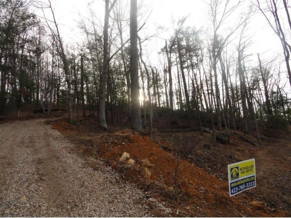 TBD Water Tank Rd, Butler, TN 37640 (MLS #400832) :: Griffin Home Group