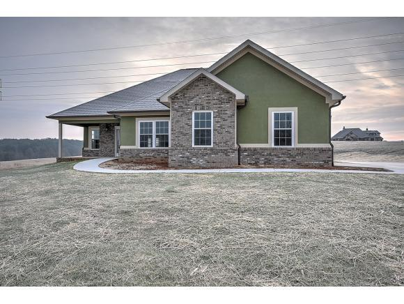 127 Links View Drive, Greeneville, TN 37743 (MLS #400892) :: Conservus Real Estate Group