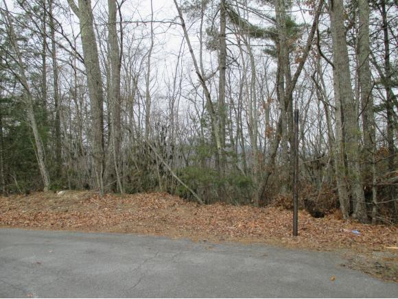 101-111 Oak Ridge Road, Erwin, TN 37650 (MLS #401037) :: Griffin Home Group