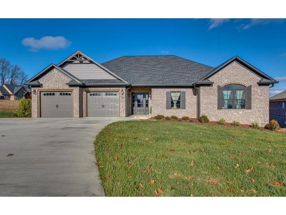 841 Hales Chapel Rd., Gray, TN 37615 (MLS #401059) :: Conservus Real Estate Group