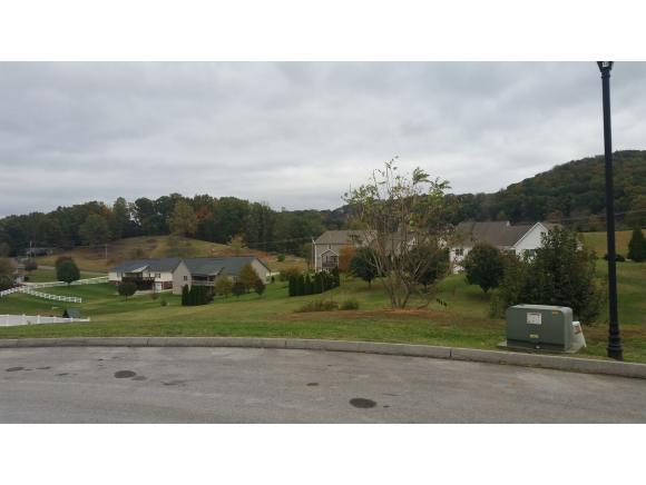 10 Sunset Meadows Ct, Gray, TN 37615 (MLS #401123) :: Conservus Real Estate Group