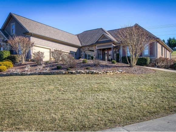 225 Lakeridge Drive, Johnson City, TN 37659 (MLS #401185) :: Conservus Real Estate Group