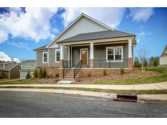 197 Princeton Gardens Drive, Johnson City, TN 37601 (MLS #401205) :: Highlands Realty, Inc.