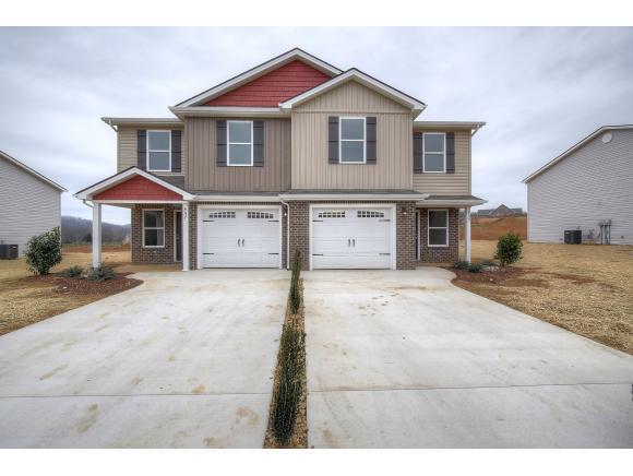 176 Miss Maude Patton #176, Jonesborough, TN 37659 (MLS #401309) :: Conservus Real Estate Group