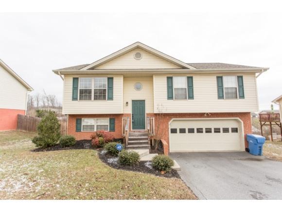 1312 Meadow Creek Ln, Jonesborough, TN 37659 (MLS #401364) :: Conservus Real Estate Group