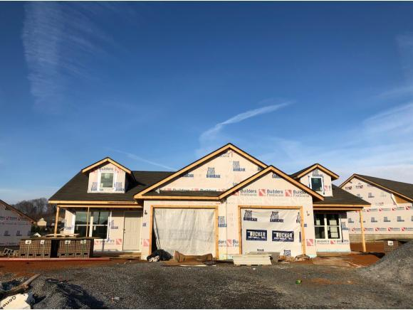 189 Miss Maude Patton #189, Jonesborough, TN 37659 (MLS #401368) :: Conservus Real Estate Group