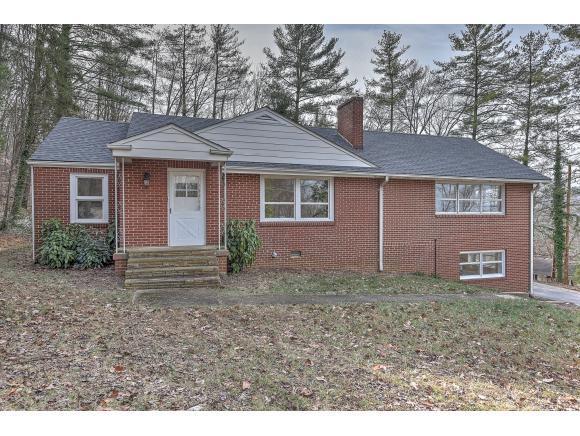 3901 Ridgeline Drive, Kingsport, TN 37664 (MLS #401392) :: Conservus Real Estate Group