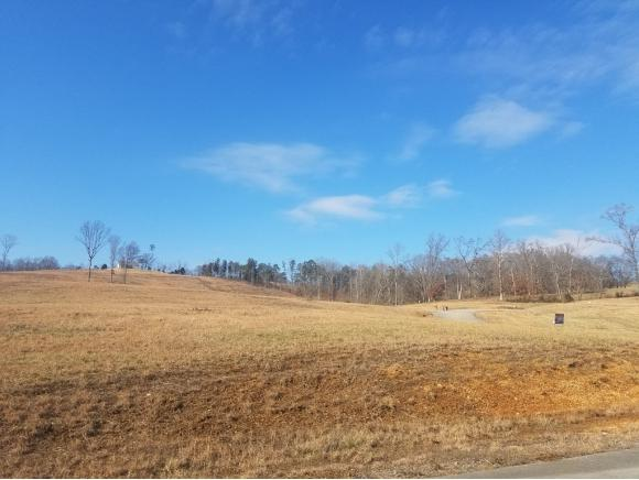 Lot 35 Jerry English Rd, Whitesburg, TN 37891 (MLS #401463) :: Conservus Real Estate Group