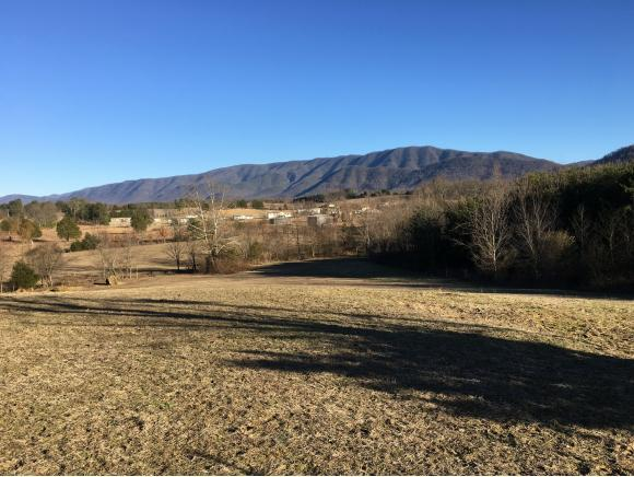 000 White Sands, Greeneville, TN 37743 (MLS #401702) :: Griffin Home Group