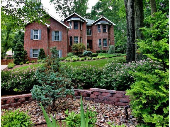 115 Keeland Drive, Gray, TN 37615 (MLS #401841) :: Conservus Real Estate Group