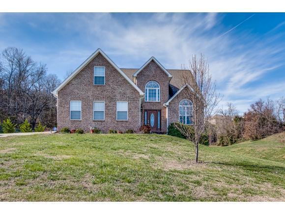 14 Grace Meadows Ct, Gray, TN 37615 (MLS #401905) :: Conservus Real Estate Group