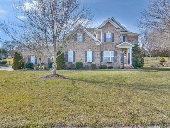 136 Ridgeview Meadows Drive, Gray, TN 37615 (MLS #402067) :: Conservus Real Estate Group