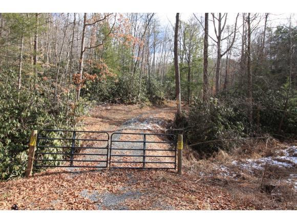TBD Murray Rd., Marion, VA 24354 (MLS #402091) :: Highlands Realty, Inc.