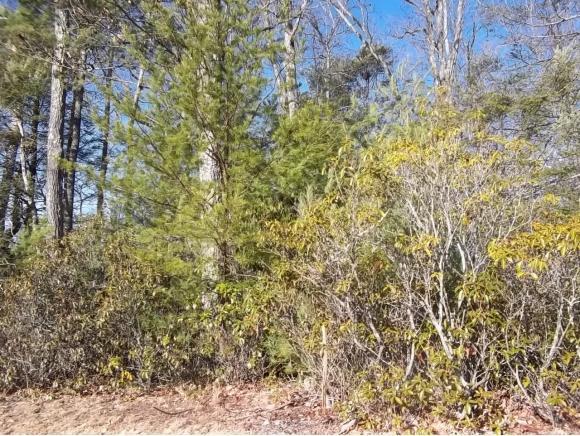 LOT 8 Oak Ridge, Erwin, TN 37650 (MLS #402139) :: Griffin Home Group
