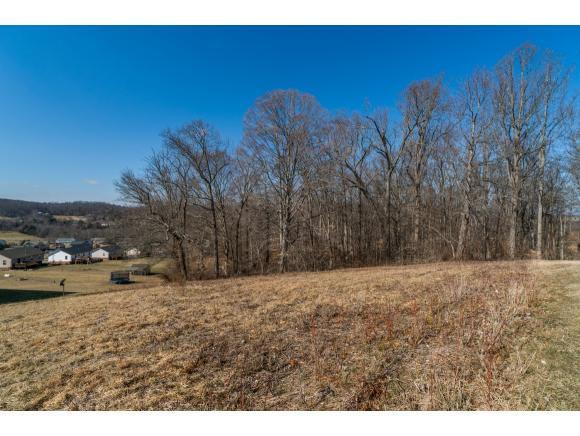 1283 Martins Glen Ln, Johnson City, TN 37615 (MLS #402188) :: Highlands Realty, Inc.