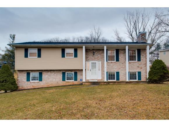 1409 Hickory Lane, Mount Carmel, TN 37645 (MLS #402265) :: Highlands Realty, Inc.
