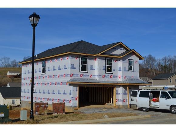 263 Miss Maude Patton Ln, Jonesborough, TN 37659 (MLS #402291) :: Conservus Real Estate Group