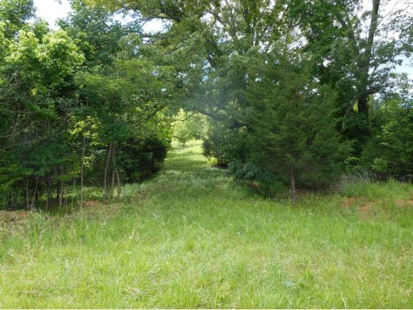 TBD Harbor Point Drive, Johnson City, TN 37615 (MLS #402476) :: Highlands Realty, Inc.