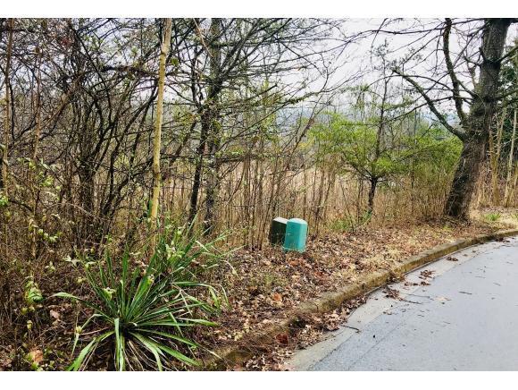 3502 Sugartree, Johnson City, TN 37604 (MLS #402493) :: Conservus Real Estate Group
