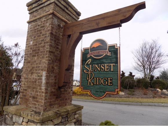 217 Sunset Ridge Court, Johnson City, TN 37615 (MLS #402535) :: Conservus Real Estate Group