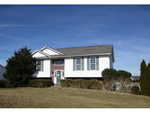 1234 Bowmantown, Limestone, TN 37681 (MLS #402537) :: Highlands Realty, Inc.