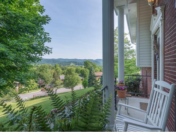920 S Sherbrook Circle, Mt Carmel, TN 37645 (MLS #402568) :: Conservus Real Estate Group